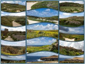 gozo5Collage